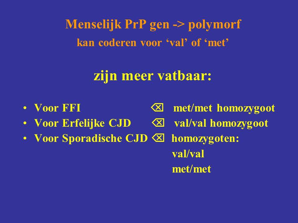 Menselijk PrP gen -> polymorf kan coderen voor 'val' of 'met' zijn meer vatbaar: Voor FFI  met/met homozygoot Voor Erfelijke CJD  val/val homozygoot Voor Sporadische CJD  homozygoten: val/val met/met