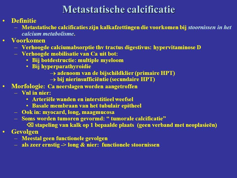 Metastatische calcificatie Definitie –Metastatische calcificaties zijn kalkafzettingen die voorkomen bij stoornissen in het calcium metabolisme. Voork