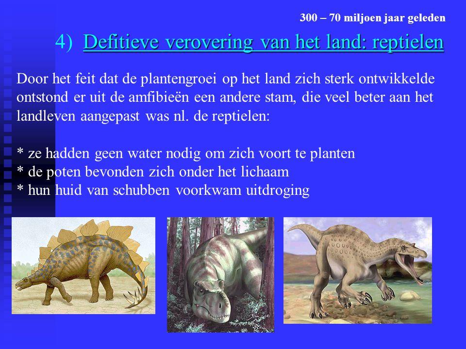 Defitieve verovering van het land: reptielen 4) Defitieve verovering van het land: reptielen 300 – 70 miljoen jaar geleden Door het feit dat de plante