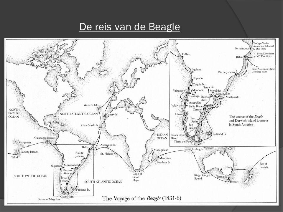 De reis van de Beagle