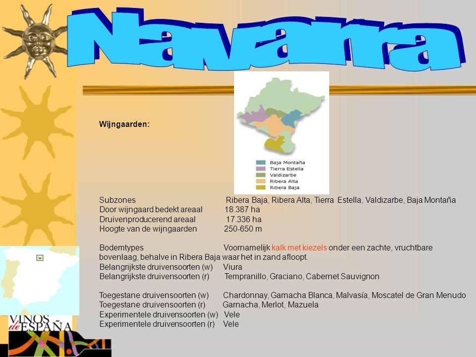 Wijngaarden: Subzones Ribera Baja, Ribera Alta, Tierra Estella, Valdizarbe, Baja Montaña Door wijngaard bedekt areaal 18.387 ha Druivenproducerend are