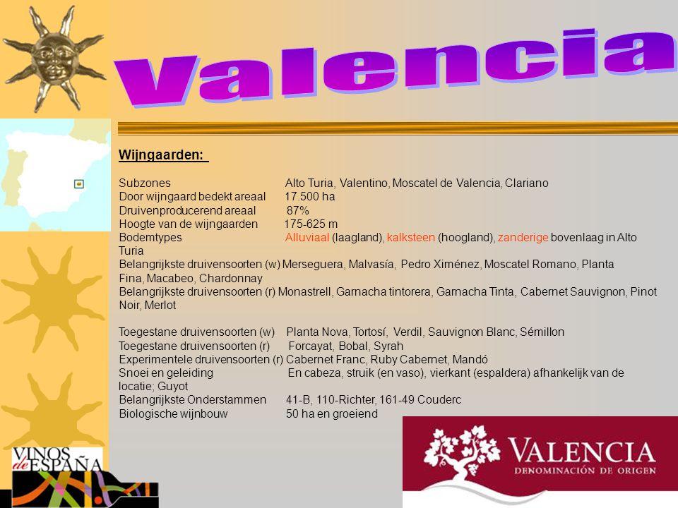 Wijngaarden: Subzones Alto Turia, Valentino, Moscatel de Valencia, Clariano Door wijngaard bedekt areaal 17.500 ha Druivenproducerend areaal 87% Hoogt