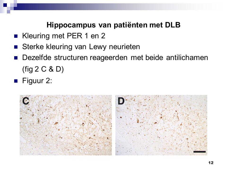 12 Hippocampus van patiënten met DLB Kleuring met PER 1 en 2 Sterke kleuring van Lewy neurieten Dezelfde structuren reageerden met beide antilichamen (fig 2 C & D) Figuur 2: