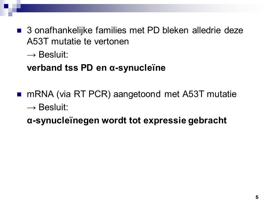 5 3 onafhankelijke families met PD bleken alledrie deze A53T mutatie te vertonen → Besluit: verband tss PD en α-synucleïne mRNA (via RT PCR) aangetoond met A53T mutatie → Besluit: α-synucleïnegen wordt tot expressie gebracht