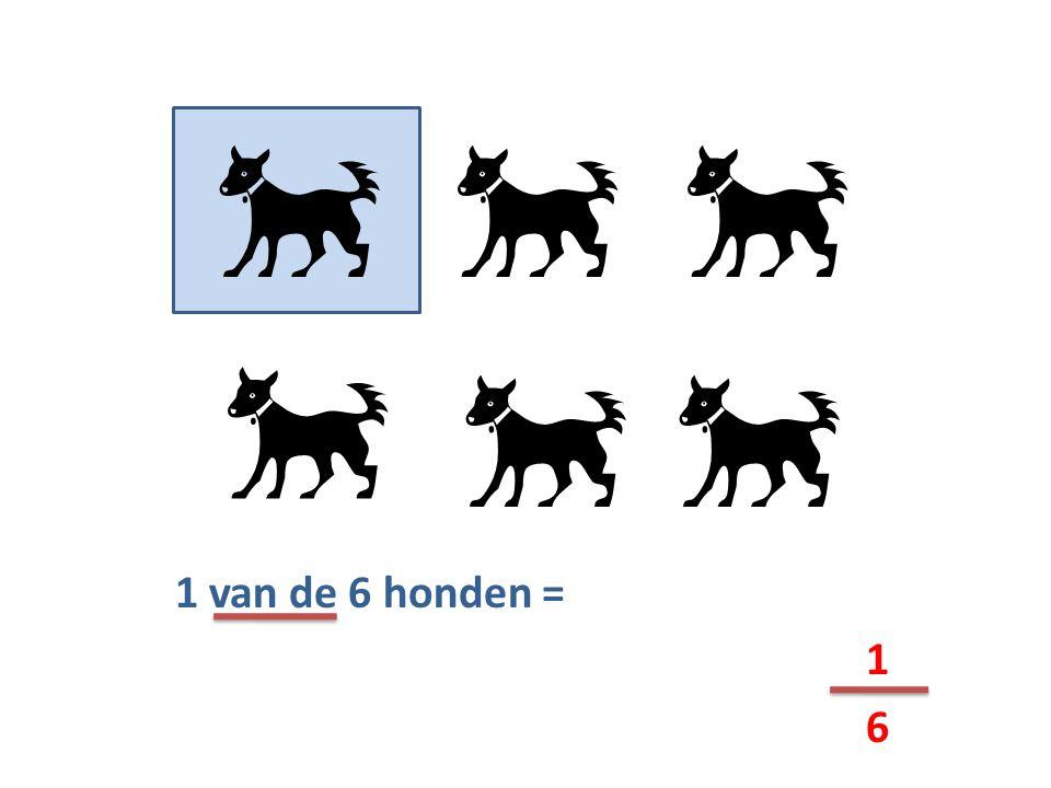 1 van de 6 honden = 1 6    