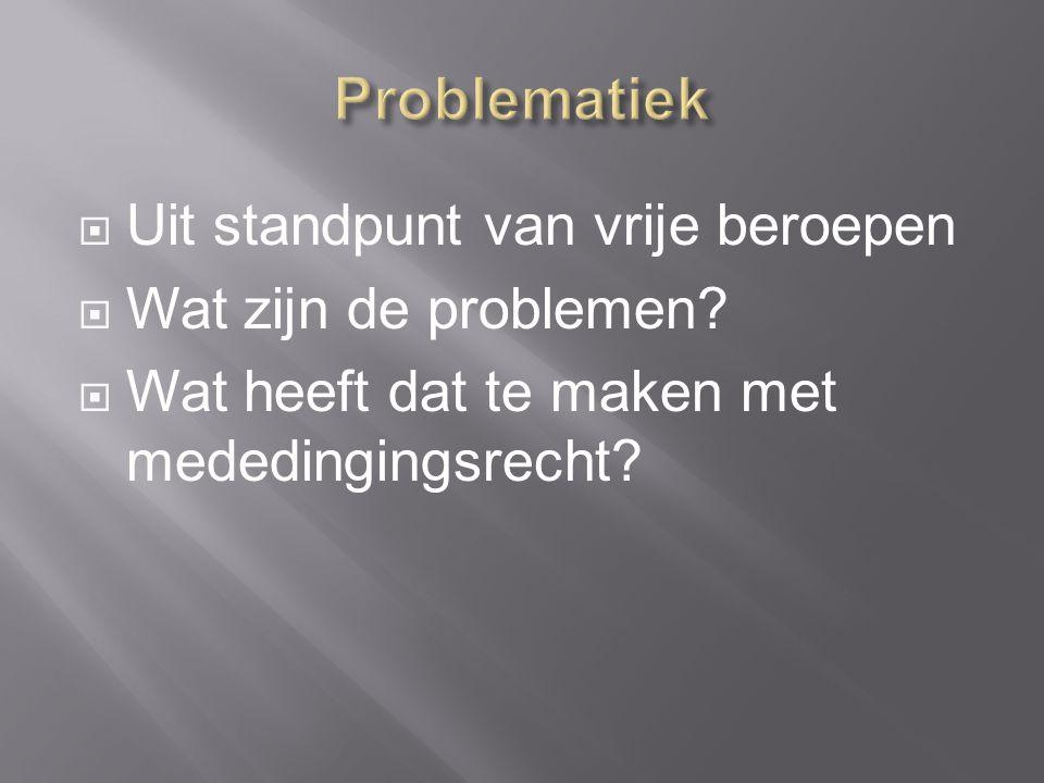  Uit standpunt van vrije beroepen  Wat zijn de problemen.