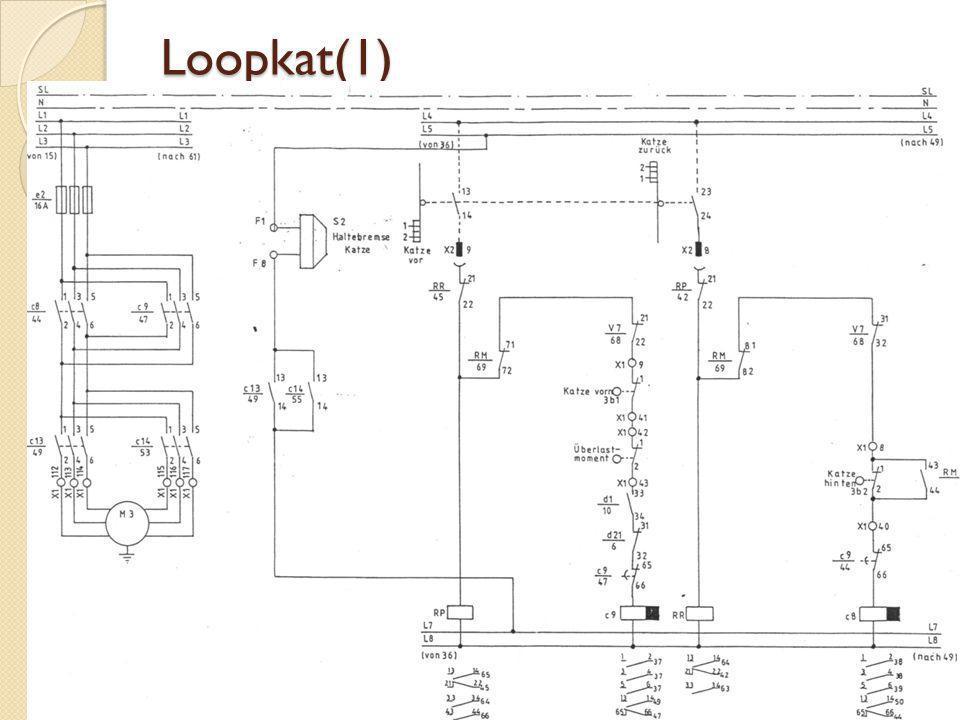 Loopkat(1)