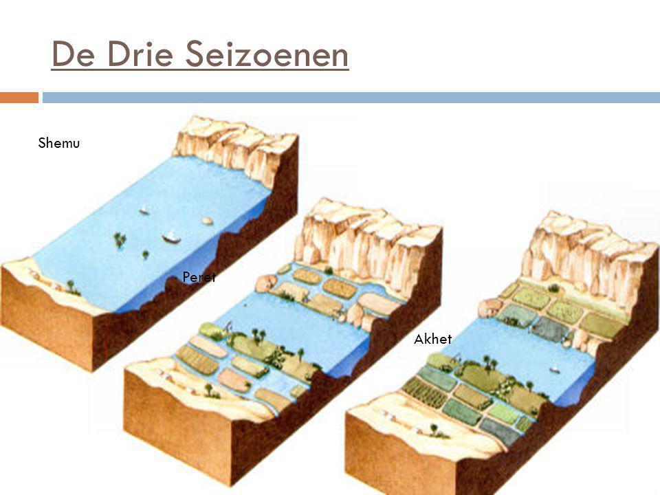 De Nijl Delta  Splitst in meerdere stukken  Middellandse Zee  24.000 km 2  Grootste deel bevolking  Vruchtbare grond  1 / 3 landbouwgewassen Egypte  Cairo en Gizeh