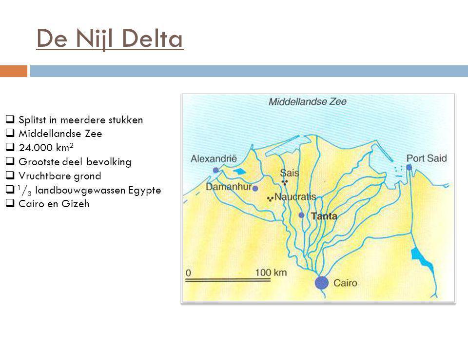 De Nijl Delta  Splitst in meerdere stukken  Middellandse Zee  24.000 km 2  Grootste deel bevolking  Vruchtbare grond  1 / 3 landbouwgewassen Egy
