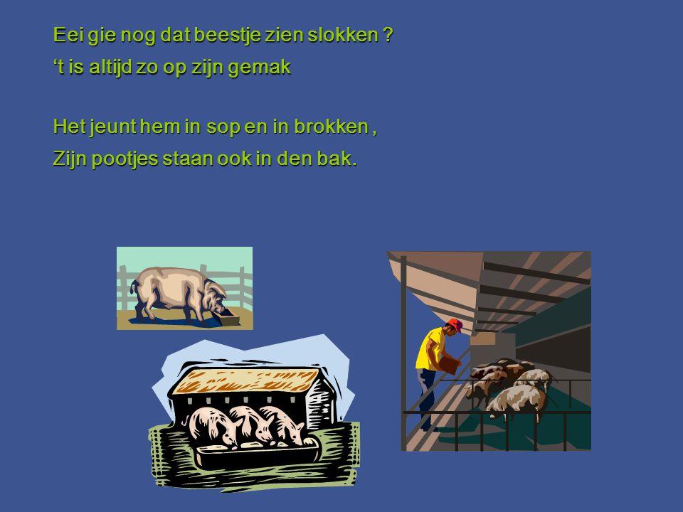 Smout, vet, hespe en spek, hoofdvlees, koteletten en patéééé Smout, vet, hespe en spek, hoofdvlees, koteletten en patéééé Worsten en bloeling en vette