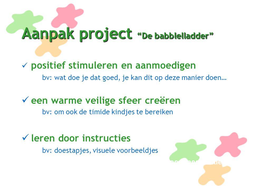 Aanpak project De babblelladder (vervolg) draaiboek Hier werd een stappenplan in krijtlijnen opgezet takenlijst Wie doet wat bugetlijst Lijst materialen