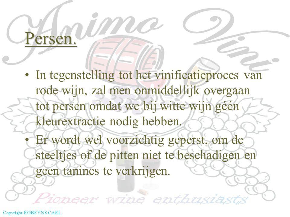Copyright ROBEYNS CARL. In tegenstelling tot het vinificatieproces van rode wijn, zal men onmiddellijk overgaan tot persen omdat we bij witte wijn géé