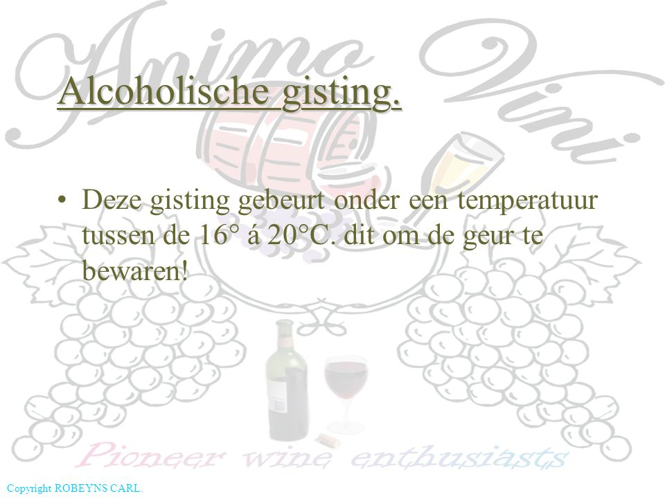 Copyright ROBEYNS CARL. Deze gisting gebeurt onder een temperatuur tussen de 16° á 20°C. dit om de geur te bewaren! Alcoholische gisting.