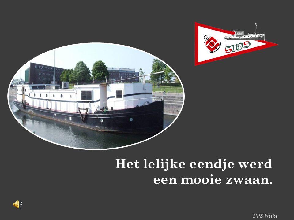 PPS Wiske Het lelijke eendje werd een mooie zwaan.