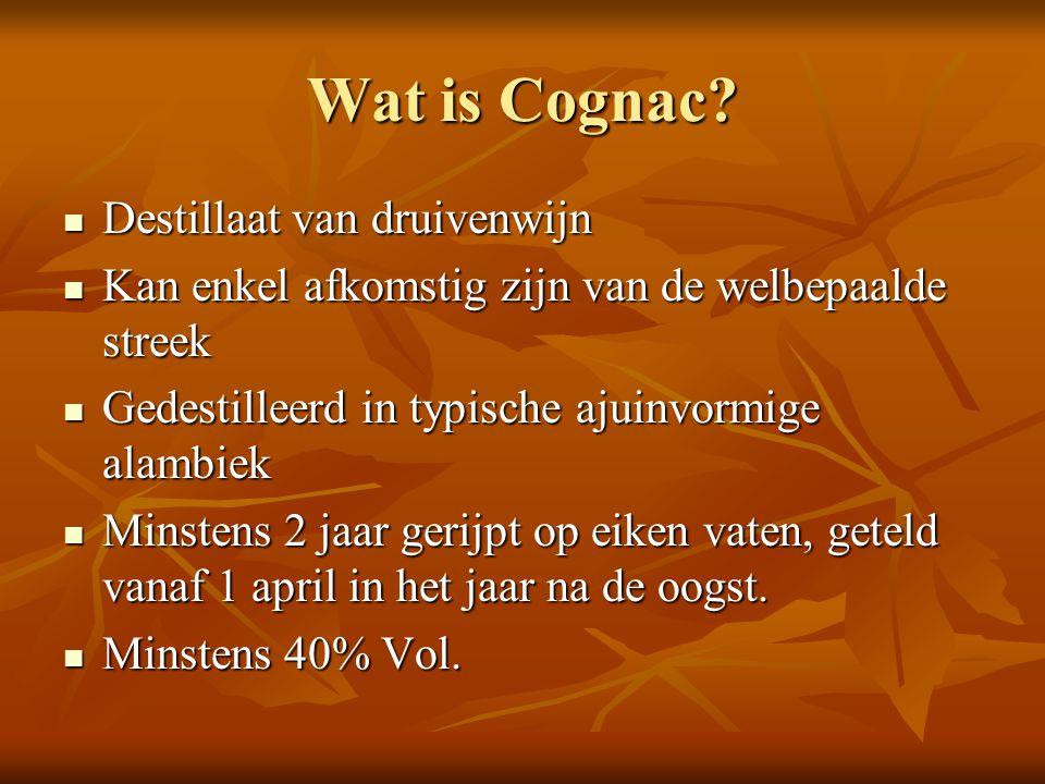 Wat is Cognac? Destillaat van druivenwijn Destillaat van druivenwijn Kan enkel afkomstig zijn van de welbepaalde streek Kan enkel afkomstig zijn van d