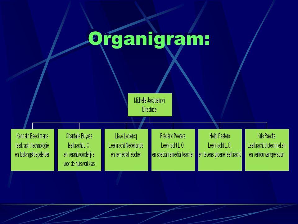 Organigram:
