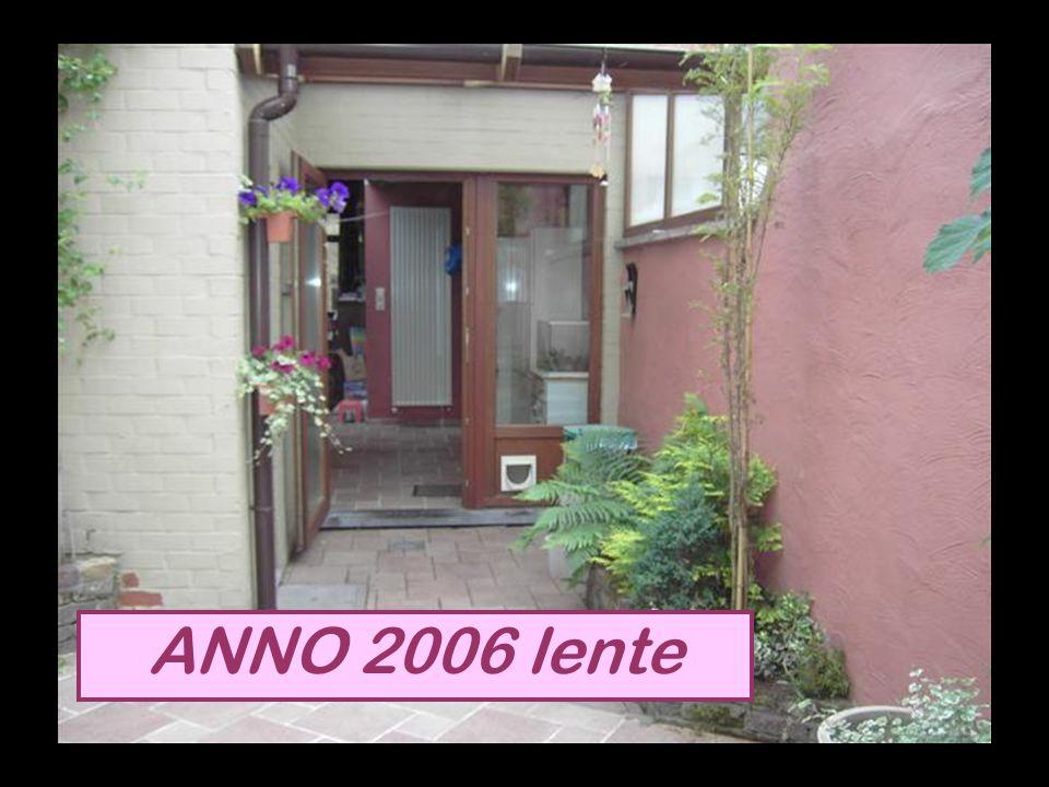 ANNO 2006 lente