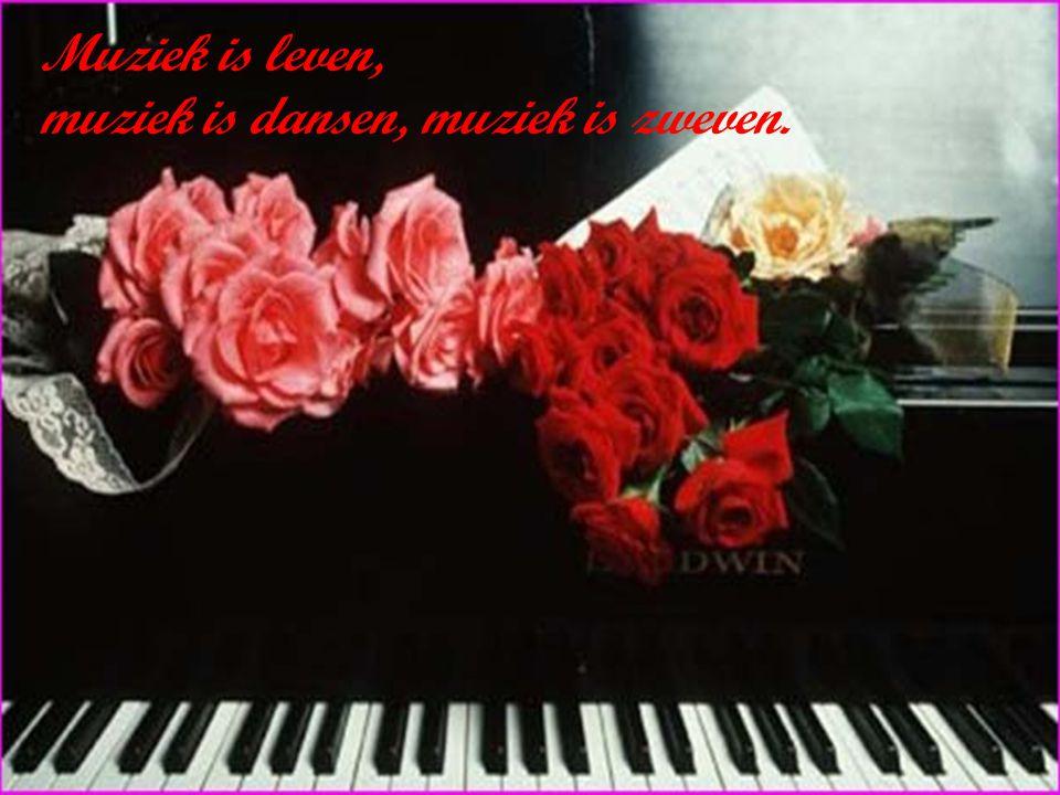 Muziek is mijn leven.