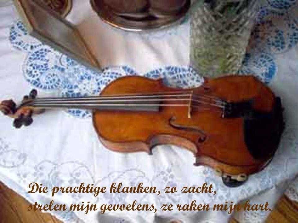 Muziek is diepe ontroering, muziek brengt ons in vervoering.