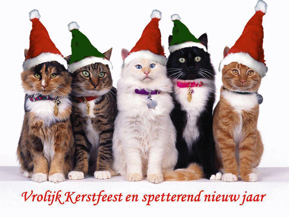 Vrolijk Kerstfeest en spetterend nieuw jaar