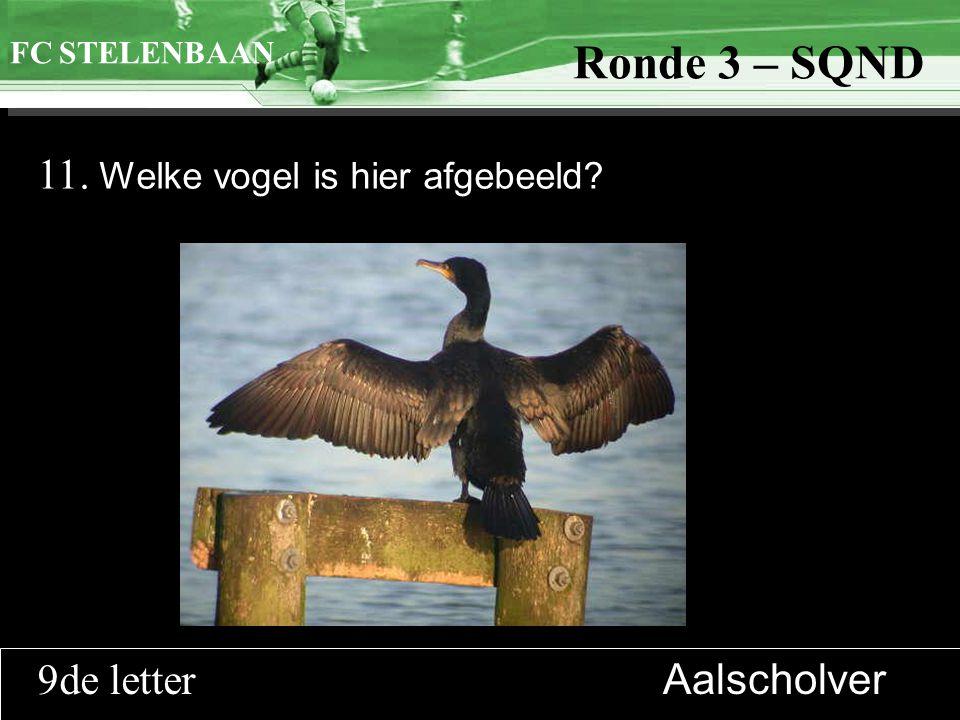 >>0 >>1 >> 2 >> 3 >> 4 >> Ronde 9 11. Welke vogel is hier afgebeeld? FC STELENBAAN Ronde 3 – SQND 9de letter Aalscholver