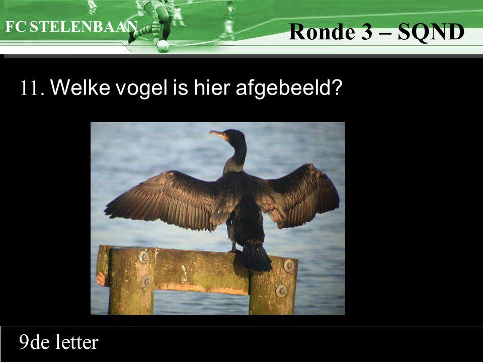 >>0 >>1 >> 2 >> 3 >> 4 >> Ronde 9 11. Welke vogel is hier afgebeeld? FC STELENBAAN Ronde 3 – SQND 9de letter