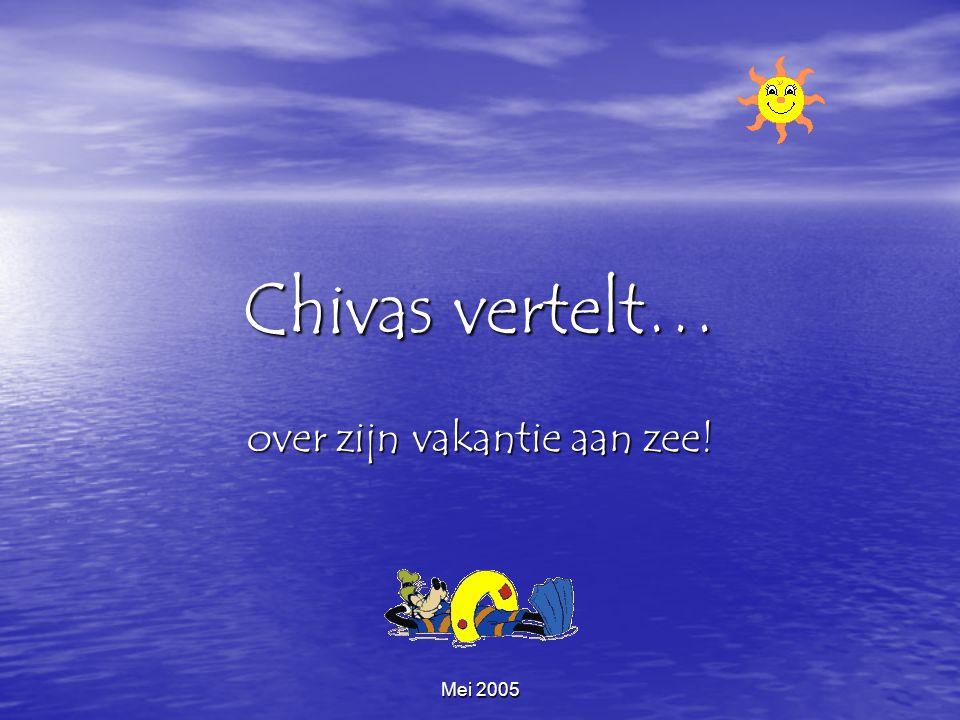 Mei 2005 Chivas vertelt… over zijn vakantie aan zee!