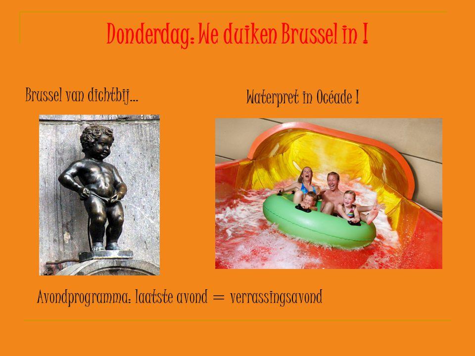 Donderdag: We duiken Brussel in ! Brussel van dichtbij… Waterpret in Océade ! Avondprogramma: laatste avond = verrassingsavond