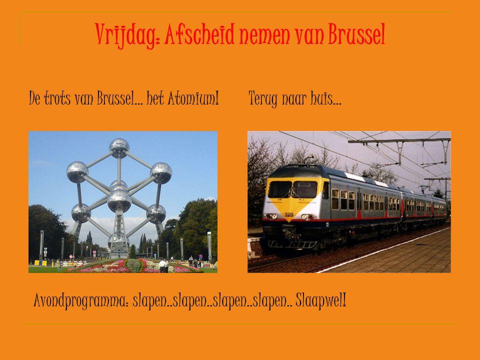 Vrijdag: Afscheid nemen van Brussel De trots van Brussel… het Atomium!Terug naar huis… Avondprogramma: slapen..slapen..slapen..slapen.. Slaapwel!