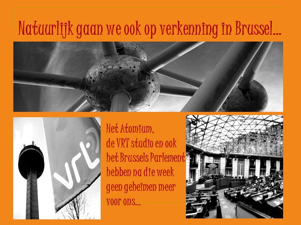 Natuurlijk gaan we ook op verkenning in Brussel… Het Atomium, de VRT studio en ook het Brussels Parlement hebben na die week geen geheimen meer voor o