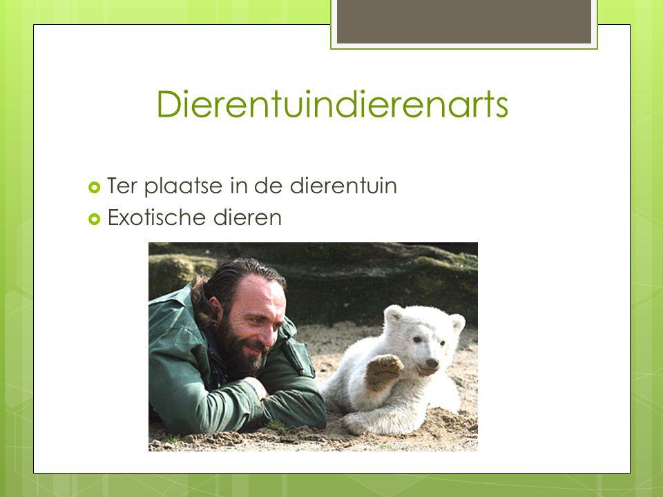 Dierentuindierenarts  Ter plaatse in de dierentuin  Exotische dieren