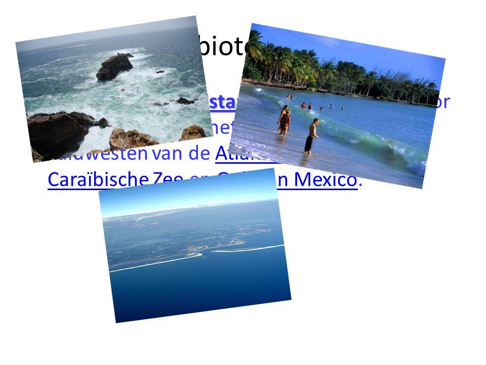 biotoop De Amerikaanse pijlstaartrog De Amerikaanse pijlstaartrog komt voor in voor het noordwesten, het westen en het zuidwesten van de Atlantische O