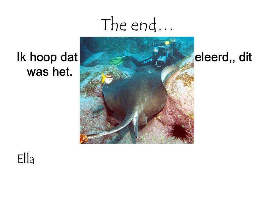 The end… Ik hoop dat jullie wat hebben bijgeleerd,, dit was het.Ella