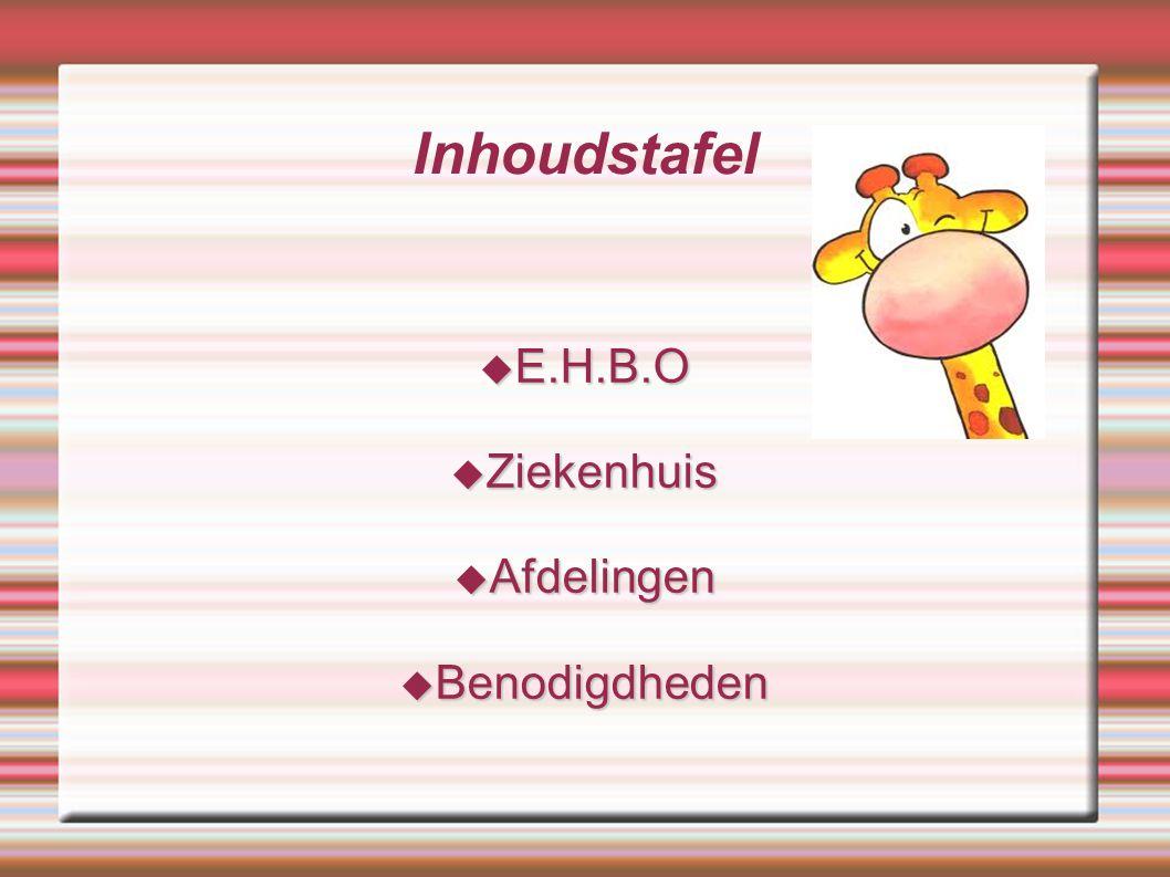 Inhoudstafel  E.H.B.O  Ziekenhuis  Afdelingen  Benodigdheden
