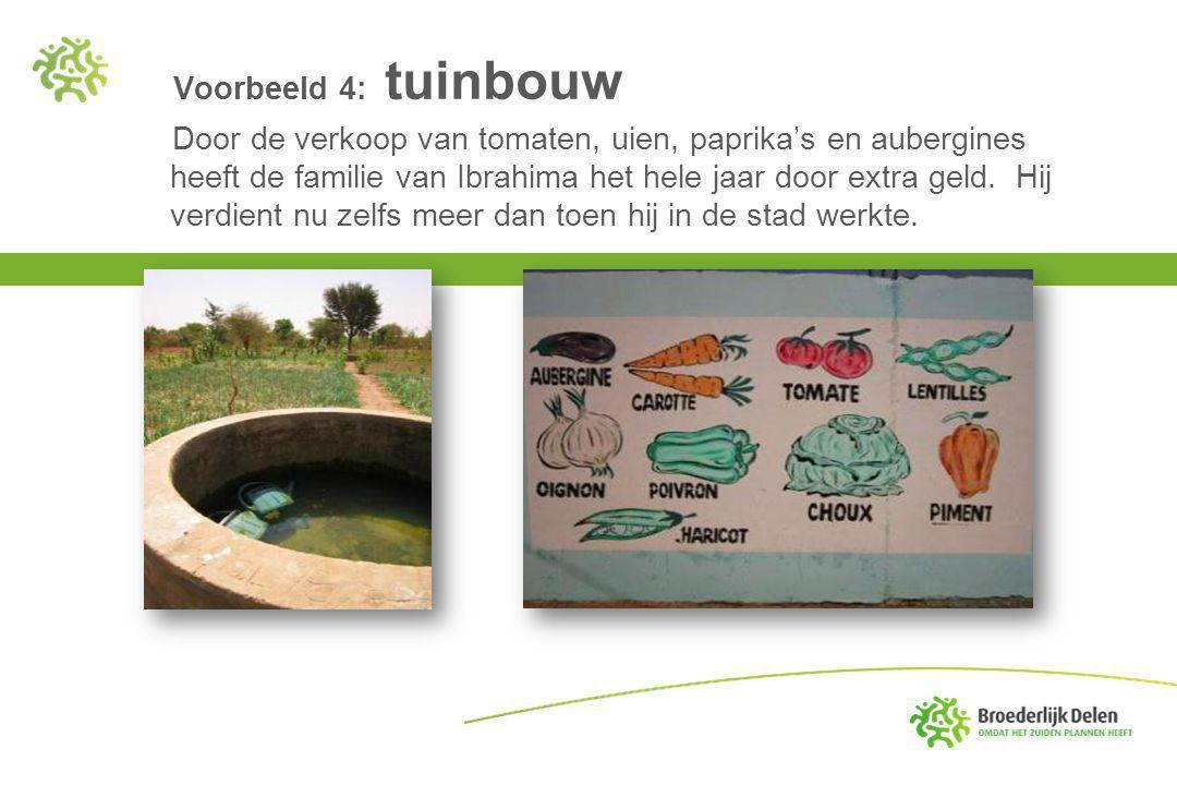 Voorbeeld 4: tuinbouw Door de verkoop van tomaten, uien, paprika's en aubergines heeft de familie van Ibrahima het hele jaar door extra geld.