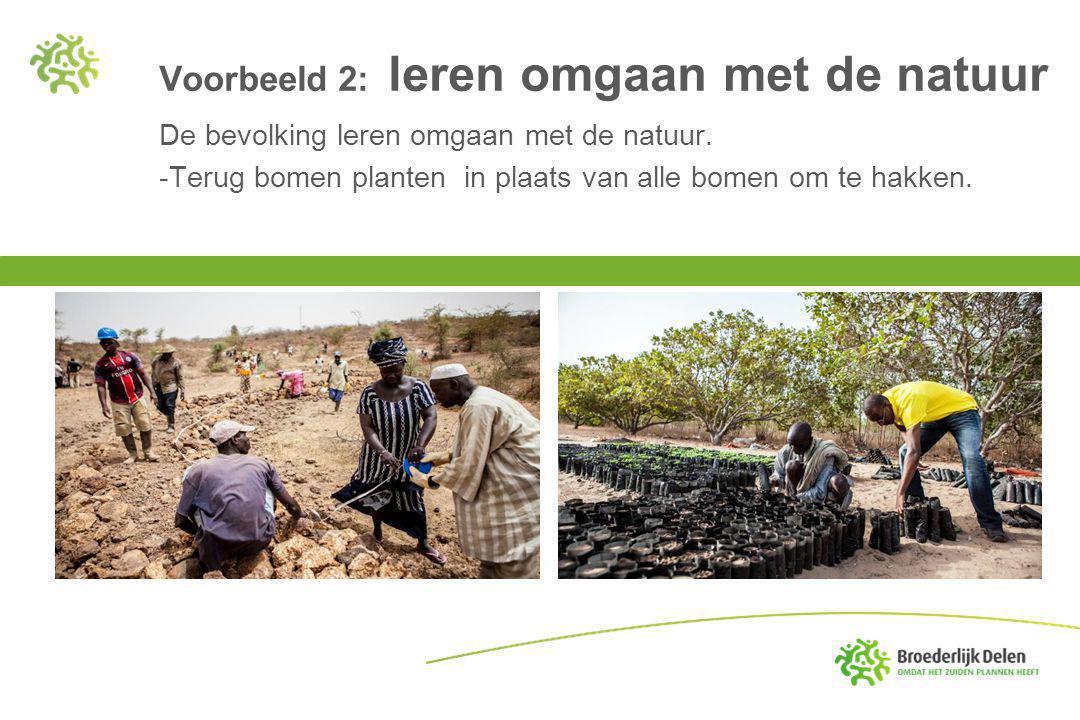 Voorbeeld 3: duurzame landbouw De boeren leren op een gezonde manier hun land te bewerken: minder gebruik van water, beter zaaigoed, betere technieken.