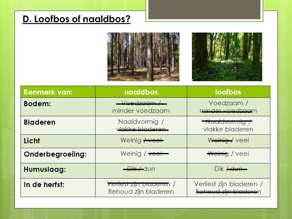 D. Loofbos of naaldbos? Kenmerk van:naaldbosloofbos Bodem: Voedzaam / minder voedzaam Voedzaam / minder voedzaam Bladeren Naaldvormig / vlakke bladere