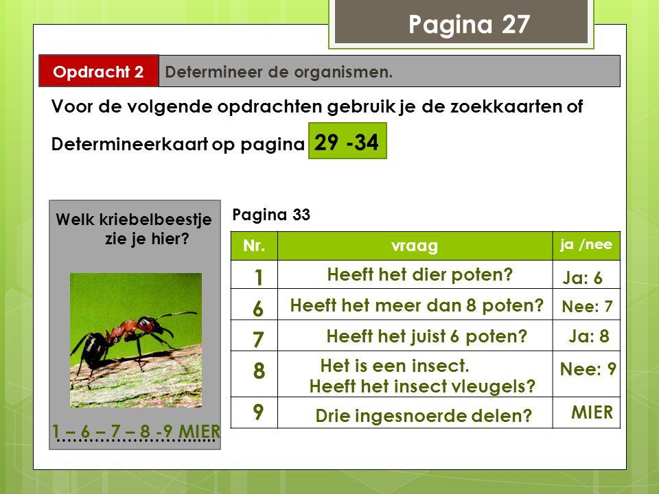 Pagina 27 Opdracht 2 Determineer de organismen. Voor de volgende opdrachten gebruik je de zoekkaarten of Determineerkaart op pagina 29 -34 Welk kriebe