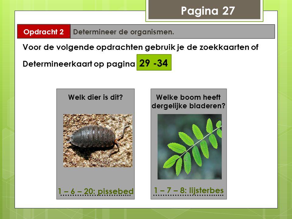 Pagina 27 Opdracht 2 Determineer de organismen. Voor de volgende opdrachten gebruik je de zoekkaarten of Determineerkaart op pagina 29 -34 Welk dier i