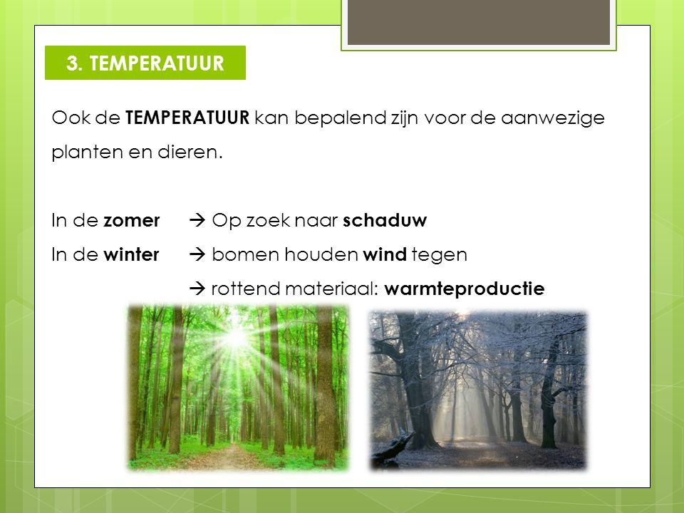Ook de TEMPERATUUR kan bepalend zijn voor de aanwezige planten en dieren. In de zomer  Op zoek naar schaduw In de winter  bomen houden wind tegen 