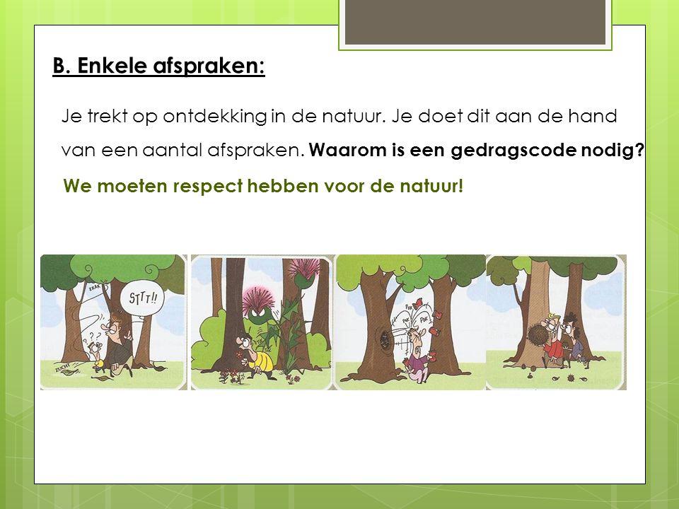 C. De lagen van het bos boomlaag (1) kruidlaag (2) moslaag (3) struiklaag (4) 1 2 3 4