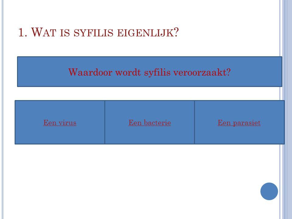 1. W AT IS SYFILIS EIGENLIJK ? Een virusEen bacterieEen parasiet Waardoor wordt syfilis veroorzaakt?