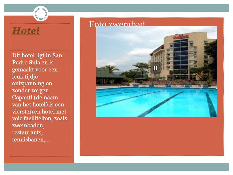 Hotel Dit hotel ligt in San Pedro Sula en is gemaakt voor een leuk tijdje ontspanning en zonder zorgen.