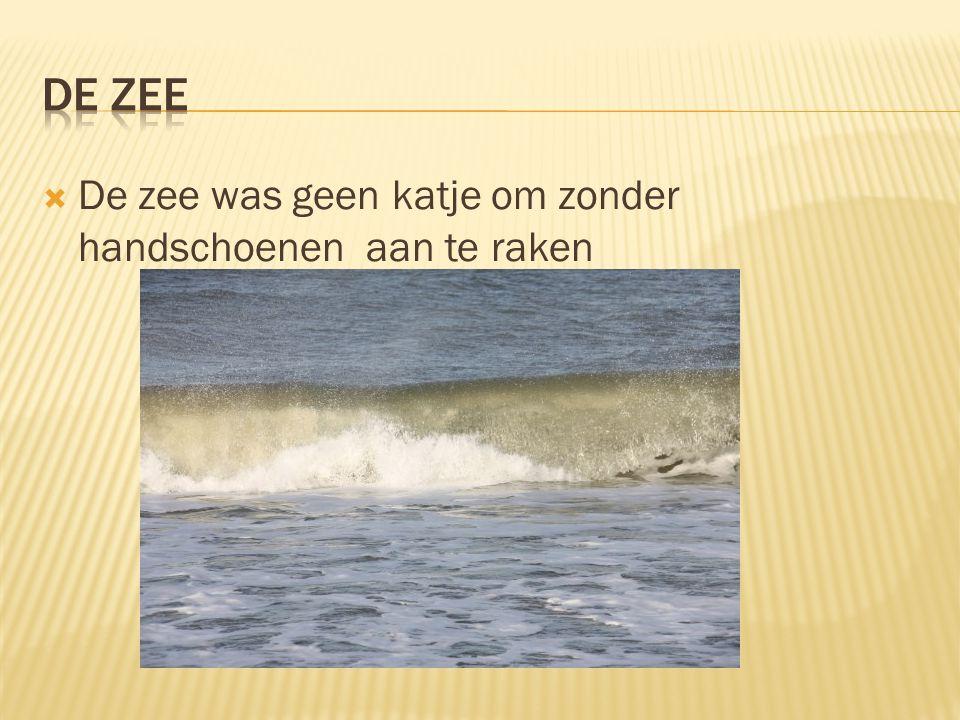  De zee was geen katje om zonder handschoenen aan te raken