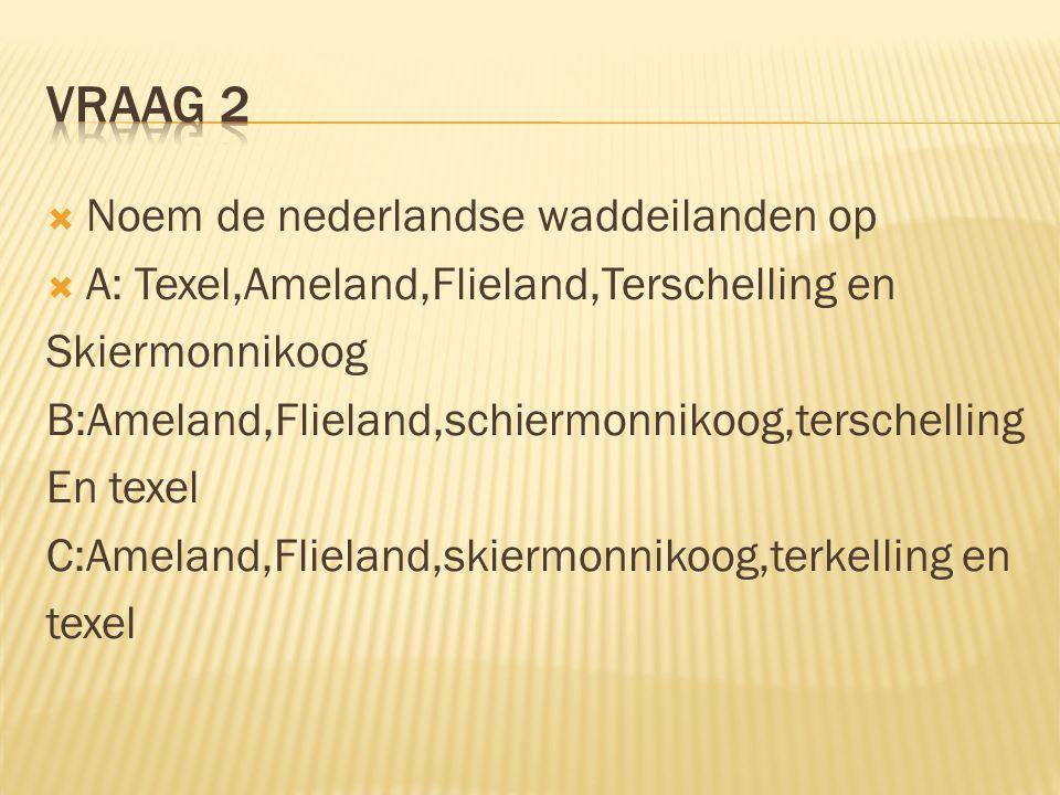  Noem de nederlandse waddeilanden op  A: Texel,Ameland,Flieland,Terschelling en Skiermonnikoog B:Ameland,Flieland,schiermonnikoog,terschelling En texel C:Ameland,Flieland,skiermonnikoog,terkelling en texel