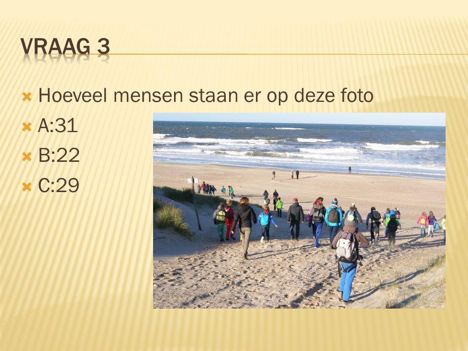  Hoeveel mensen staan er op deze foto  A:31  B:22  C:29
