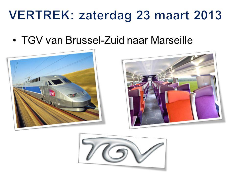 TGV van Brussel-Zuid naar Marseille