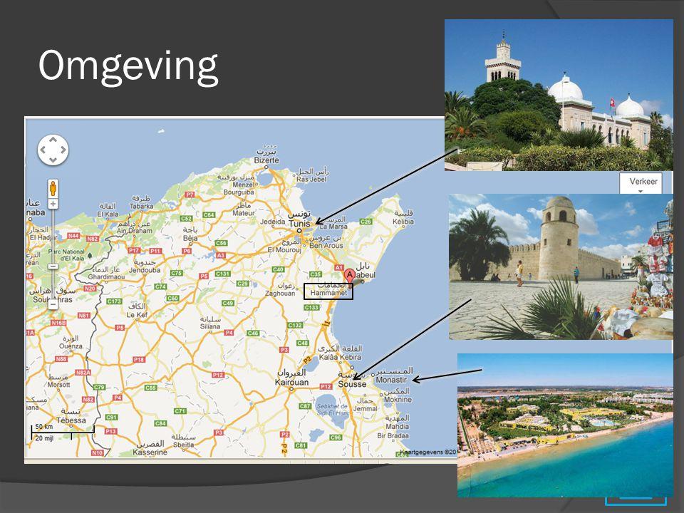 Bezienswaardigheden DagTe bezoeken stadcultuur 19 augustusHammametHet 'saint tropez' van Tunesië, strand, natuur, Medina bezoeken 20 augustusTunis (68,8 km)Stad en nabijgelegen streken bezoeken, Bardomuseum 21 augustusEl Jem (146 km)Ruïnes bezoeken bv.
