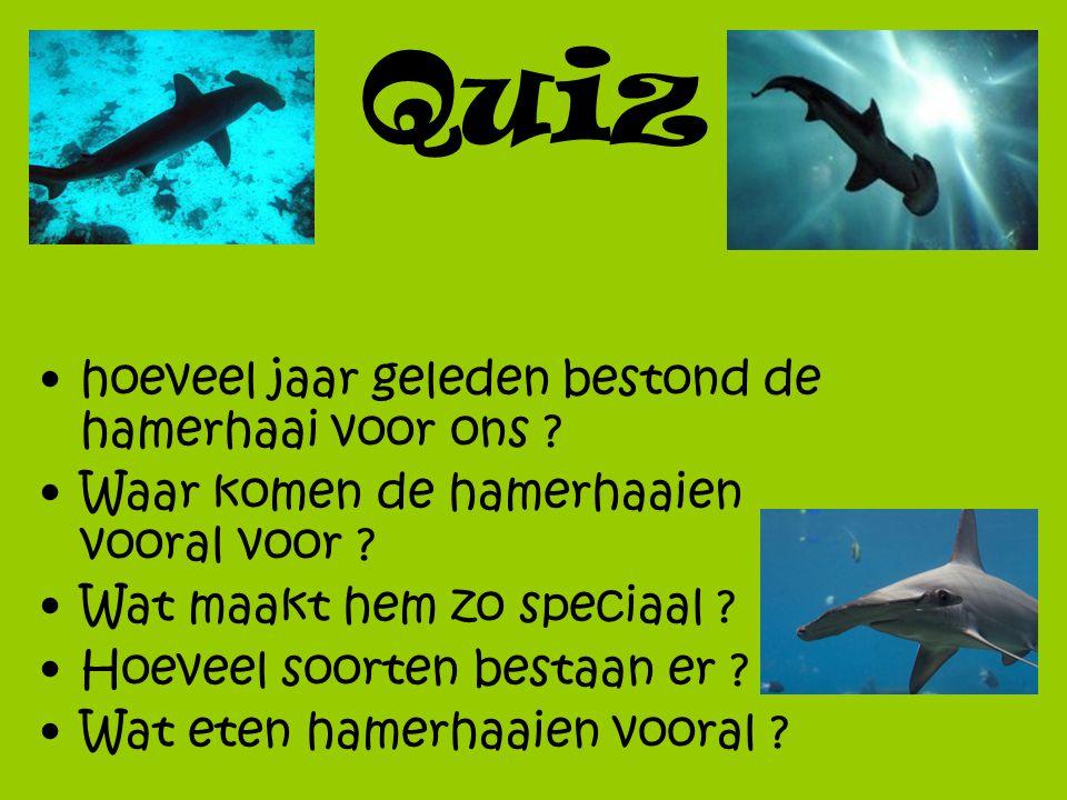 Quiz hoeveel jaar geleden bestond de hamerhaai voor ons ? Waar komen de hamerhaaien vooral voor ? Wat maakt hem zo speciaal ? Hoeveel soorten bestaan