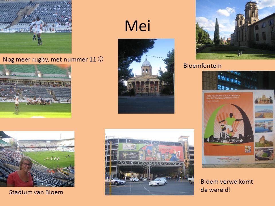 Mei Nog meer rugby, met nummer 11 Bloemfontein Stadium van Bloem Bloem verwelkomt de wereld!